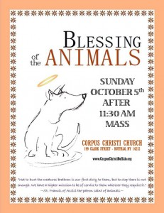 Blessing of the Animals after 11:30am Mass